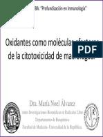 Oxidantes Moléculas Efectoras Macrófagos
