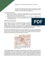 Diagnostico diferencial anatomopatologico
