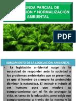 Segunda Parcial de Legislacion y Normalizacion Ambiental