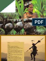 Indigenous People Spanish PDF