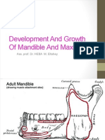 Development & Growth of Mandible