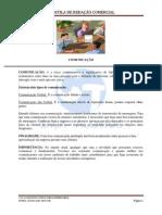 Redação Comercial.pdf