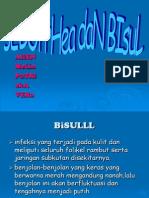 BISUL 2D