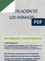 Clasificaciondelosanimales Explicacionesnopresenciales 100527091430 Phpapp02