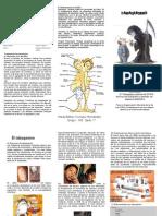 Tabaquismo Triptico para prevenir adicciones.pdf
