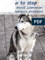 How to Stop 10 Husky Obedience Problems