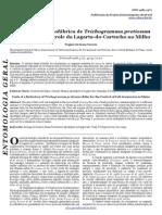 custo trichogramma