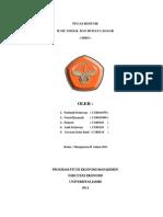 IBD cover