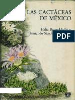 Las Cactaceas de Mexico V2
