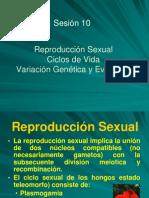9 Rep. Sexual y Diversidad