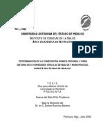 Determinacion Quimica Proximal y Fibra Dietaria