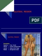 658855 Gluteal Region