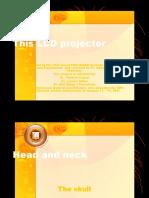997633 Ana Head and Neck