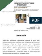 16 10 2012 Grupos Vulnerables, Presentacion Para La Exposición Prof Maritza Carrillo