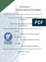 TRABAJO 1 Sanchez Barreda
