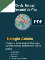 2da Parte_1er Parcial Biología