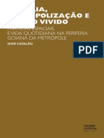 Brasilia Metropolizacao e Espaco Vivido