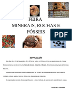 feira minerais09