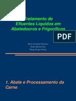 Apresentação - Abatedouros e Frigorificos