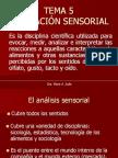Evaluación Sensorial