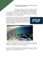 Certificacion Playas