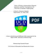Role of Wnt 6 in Diabetic Nephropathy