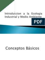 Introduccion a La Ecologia Industrial y Medio Ambiente