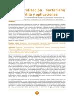 SEMINARIO_SEM_7_058 magnetofosiles.pdf