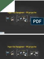 PMI Project Risk Management
