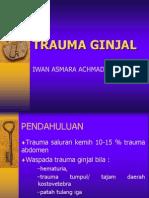 Trauma Ginjale