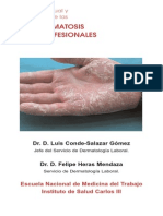 Concepto Actual y Clasificación de Las Dermatosis Profesionales