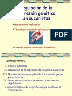 Regulacion Genica en Eucariotas2008