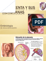 La Placenta