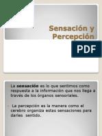 3 Sensación y Percepción