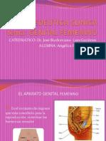 Propedeutica Clinica- Genitales Femeninos