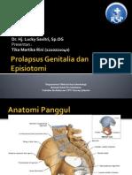Prolapsus Genitalia