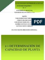 2.1 y 2.2 Determinacion Del Tamaño Optimo Del Proyecto 2