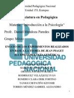 EXPERIMENTOS DE LA TEORIA DE PIAGET.docx