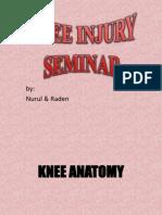 Knee injury (orthopaedic)