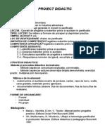 Proiect PanifIcatie Practica
