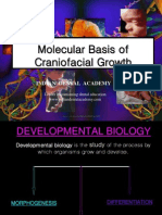 Molecular Basis PART 1 / orthodontic courses by Indian dental academy