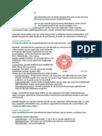 marketingcommunicatie h1 - samenvatting