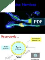 repaso inicial impulso y sinapsis.ppt