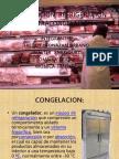 Congelacion Refrigeracion y Ultracongelacion