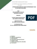 Análisis de La Producción Diaria de Aceite