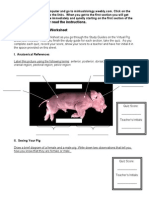 virtual pig dissection worksheet 06-07 2
