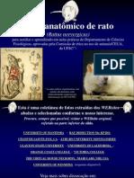 Atlas Rato 2009