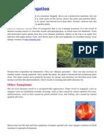 Virus or Variegation of Plants