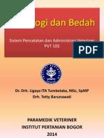 SPAV 7 Radiologi Dan Bedah-praktikum-1