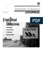 Crime & Illegal Immigration